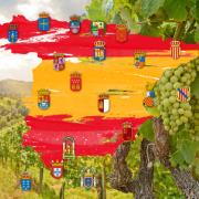 スペインワインのすべてが分かる スペインワイン発見!